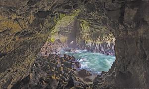 sea-lion-cave-cp