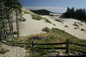 oregon-dunes-near-florence-by-traci-williamson