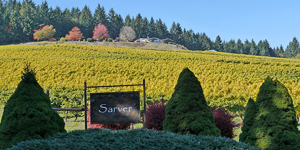Sarver-Winery-in-the-fall-by-Rick-Obst